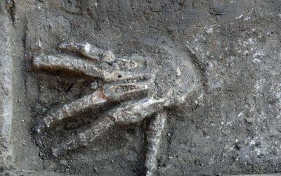 Abgetrennte Hände in Avaris entdeckt